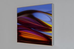 chromatic plants, polished stainless steel light box with laserchrome slide, private collection, vienna, austria, 2010