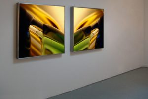 macro landscape, 2 stainless steel light boxes with laserchrome slide, gallery wandelbar, gtaad, switzerland, 2005