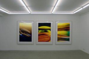 transmutation + macro landscape, laserchrome grossfoto auf aluminium-dibond gerahmt, galerie bernd lausberg, düsseldorf, 2006