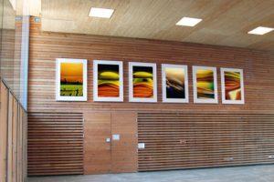 shift + transmutation + macro landscape, laserchrome grossfoto auf aluminium dibond gerahmt, grundschule lehrer-wirth-straße, münchen, 2005