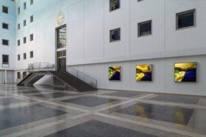 macro landscape, 6 edelstahl-leuchtkästen laserchrome grossdiapositiv, e-on regensburg, 2004