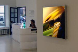 macro landscape, edelstahl-leuchtkästen laserchrome grossdiapositiv, galerie kashya hildebrand zürich, 2005