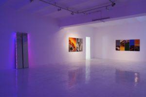 twins + cliffs + chromatic plants, studio d'arte contemporanea pino casagrande, rom, 2011