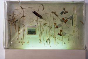 landscape in plastic, harzblock, galerie hofmeisterhaus, 2000
