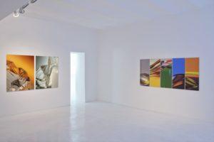 cliffs + chromatic plants, auflage 3+1 ap, studio d'arte contemporanea pino casagrande, rom, 2011